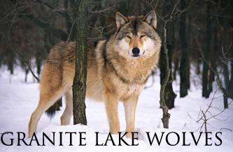 Granite Lake Wolves