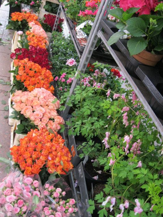 Berlin flower market