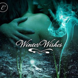 Winter Wishes audiobook by Vivian Arend