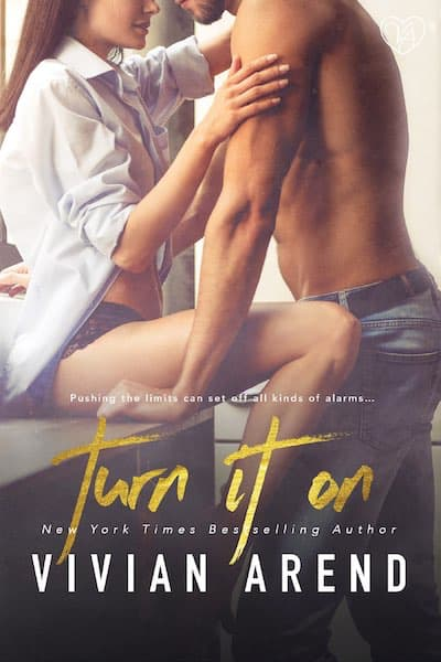 Book cover for Turn It On (Turner Twins) by Vivian Arend