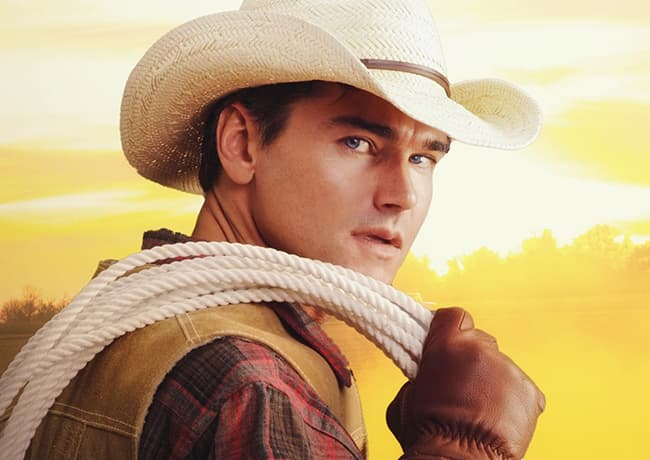 Western Cowboy Romance Books by Vivian Arend